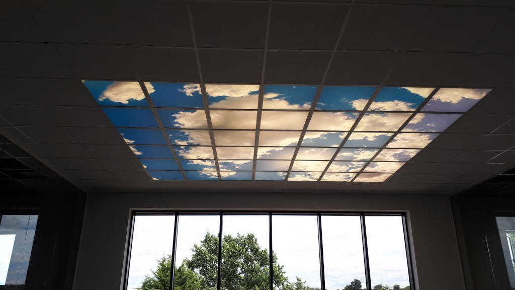 Sky Ceiling at Commercial Property, Kent